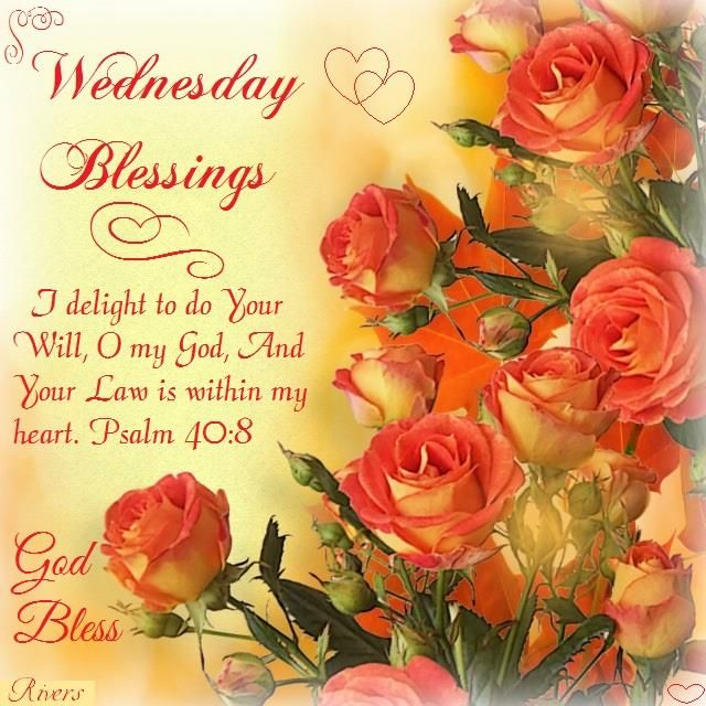 Wednesday psalm 40 8